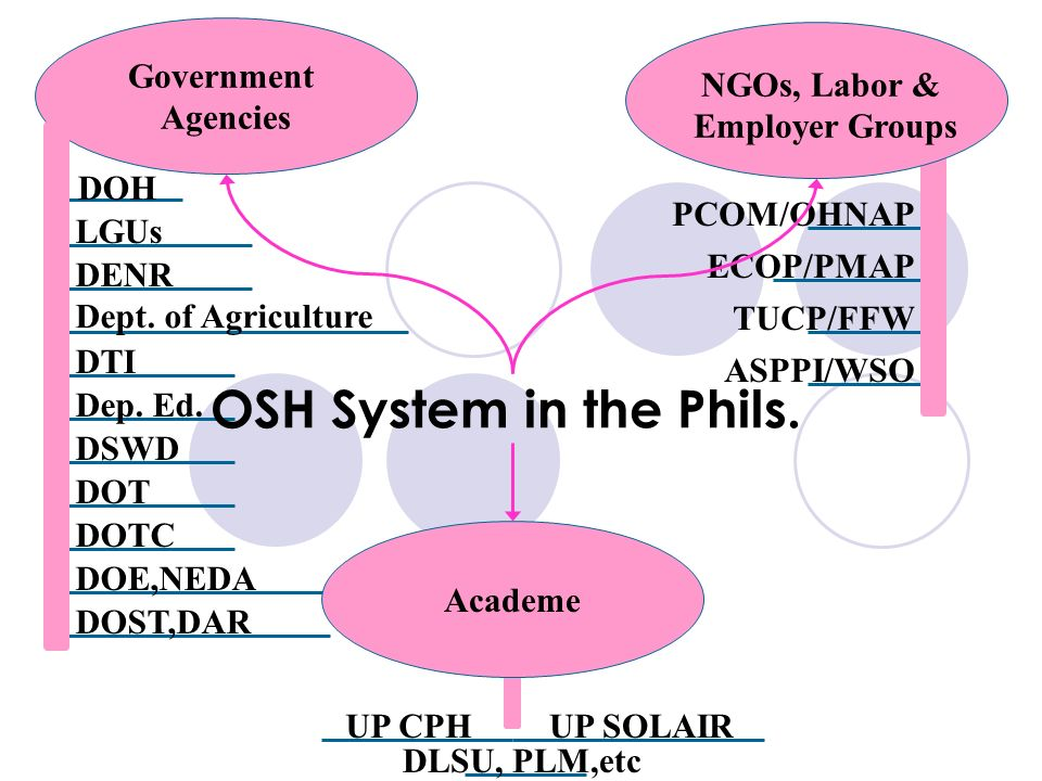 PCOM/OHNAP ECOP/PMAP TUCP/FFW ASPPI/WSO DOT DOTC DOE,NEDA DOH LGUs DENR Dept. of Agriculture DTI Dep. Ed. DSWD OSH System in the Phils. Government Age