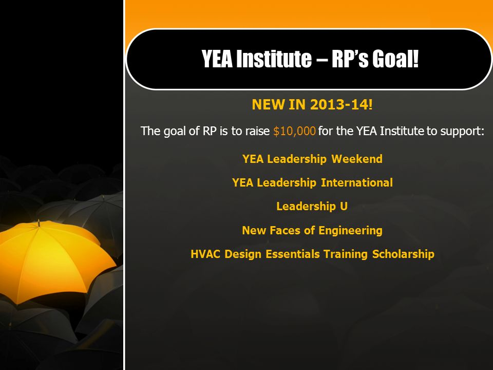 YEA Institute – RPs Goal. NEW IN 2013-14.