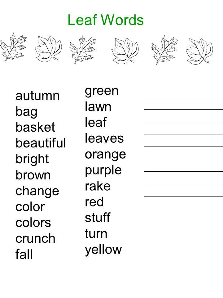 Leaf Words autumn bag basket beautiful bright brown change color colors crunch fall green lawn leaf leaves orange purple rake red stuff turn yellow