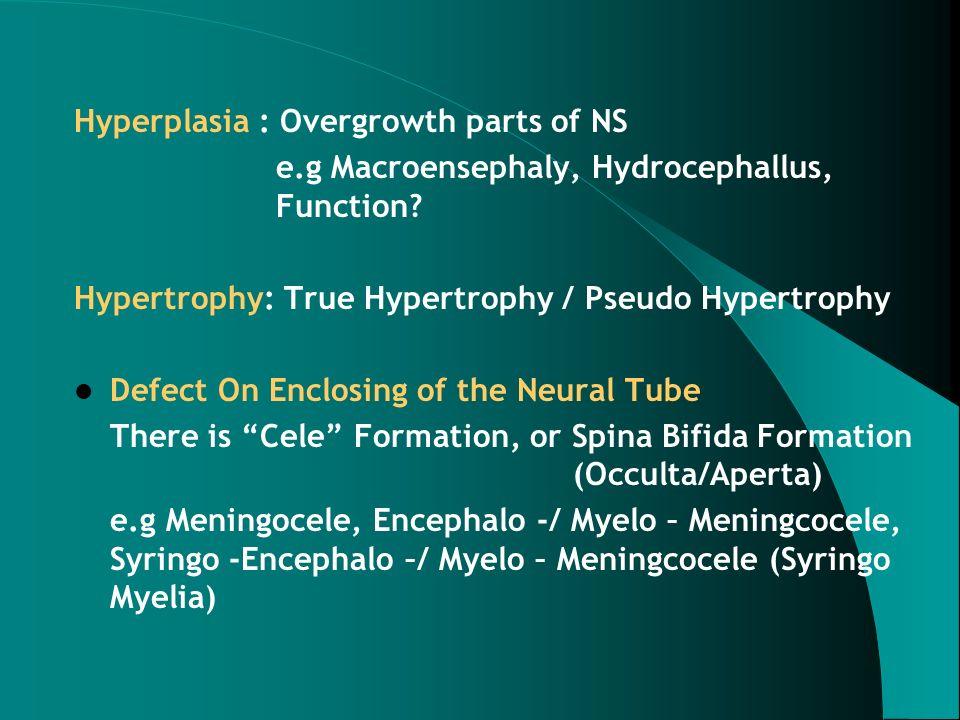 Head, generalized cerebral atrophy – CTscan DEGENERATIVE DISORDERS