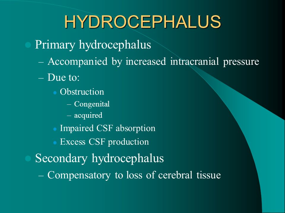 HYDROCEPHALUS Primary hydrocephalus – Accompanied by increased intracranial pressure – Due to: Obstruction –Congenital –acquired Impaired CSF absorpti