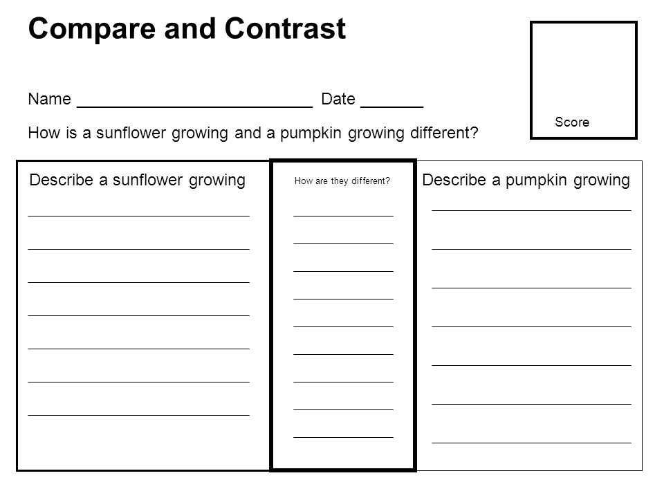 Compare and Contrast How are they different? Describe a sunflower growing Name __________________________ Date _______ How is a sunflower growing and