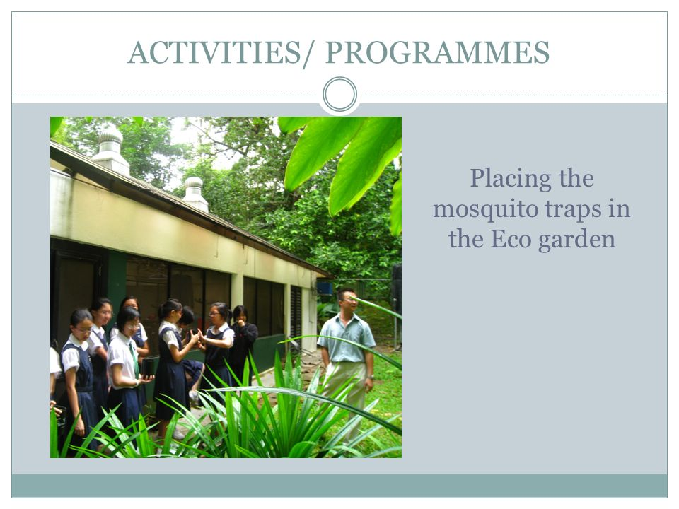 ACTIVITIES/ PROGRAMMES Placing the mosquito traps in the Eco garden