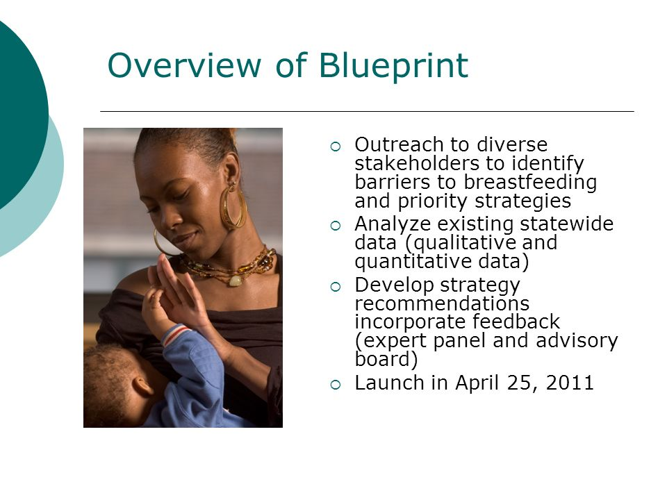 Overview of Blueprint Outreach to diverse stakeholders to identify barriers to breastfeeding and priority strategies Analyze existing statewide data (qualitative and quantitative data) Develop strategy recommendations incorporate feedback (expert panel and advisory board) Launch in April 25, 2011