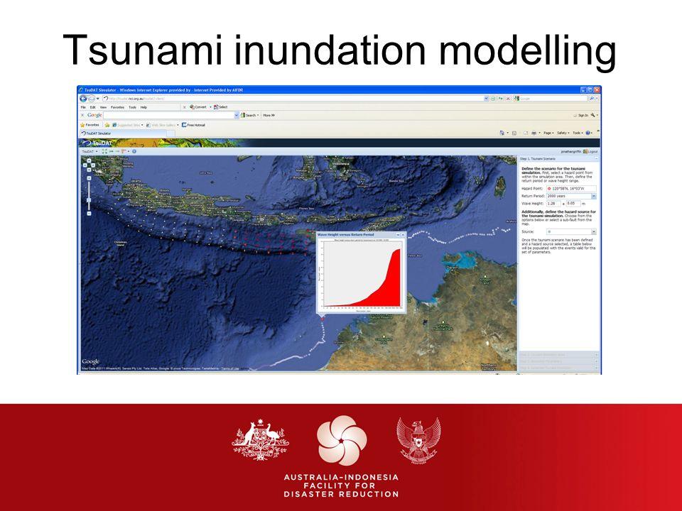 Tsunami inundation modelling