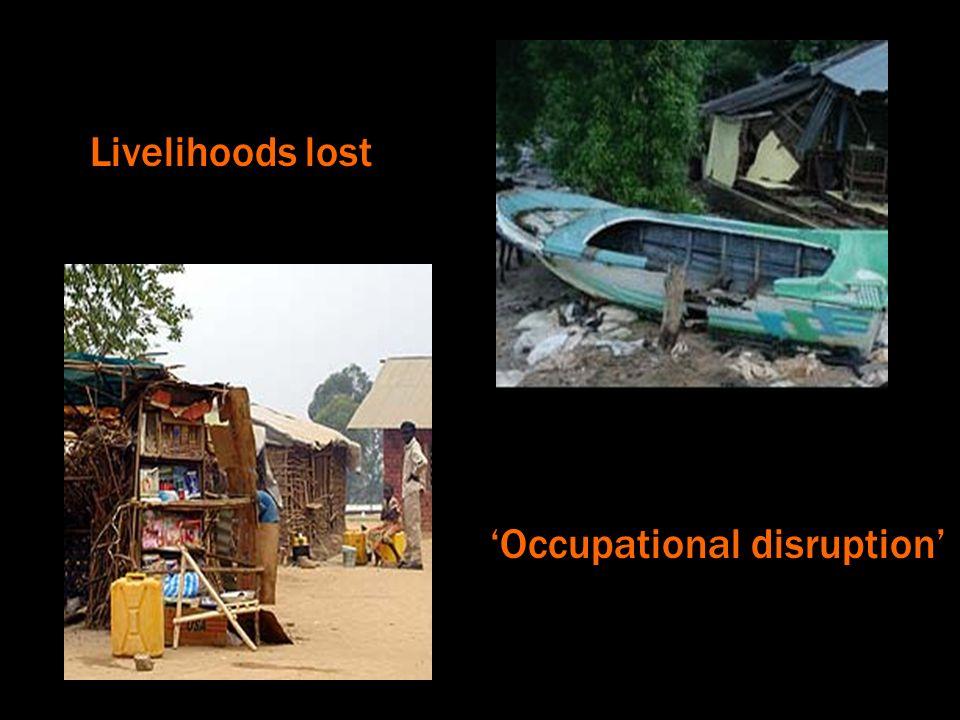 Livelihoods lost Occupational disruption