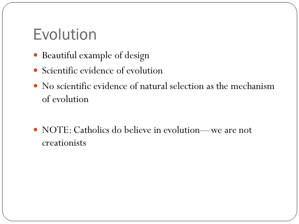 Evolution Beautiful example of design Scientific evidence of evolution No scientific evidence of natural selection as the mechanism of evolution NOTE: