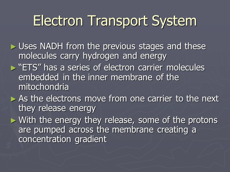 Electron Transport System Uses NADH from the previous stages and these molecules carry hydrogen and energy Uses NADH from the previous stages and thes