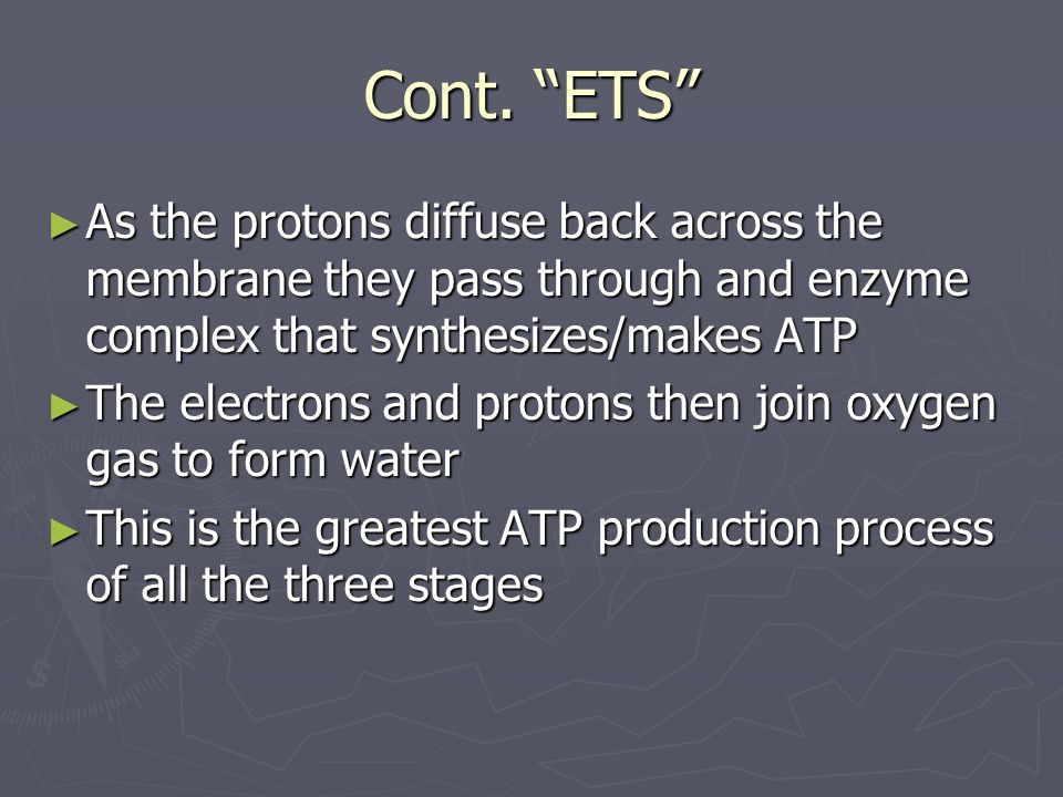 Cont. ETS As the protons diffuse back across the membrane they pass through and enzyme complex that synthesizes/makes ATP As the protons diffuse back