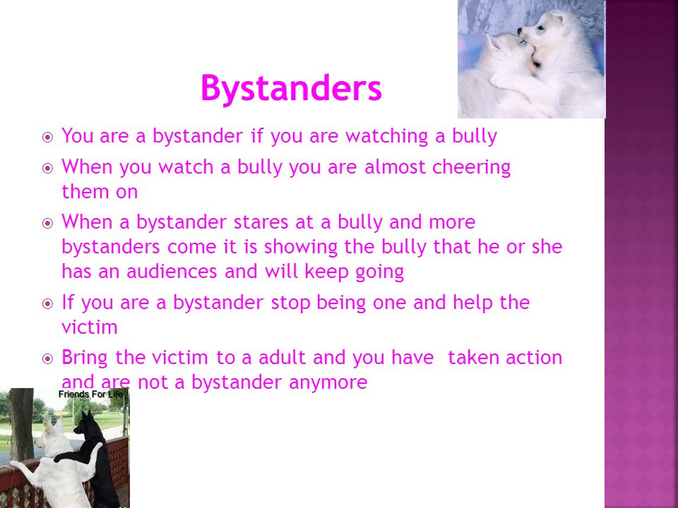 You are a bystander if you are watching a bully When you watch a bully you are almost cheering them on When a bystander stares at a bully and more bys