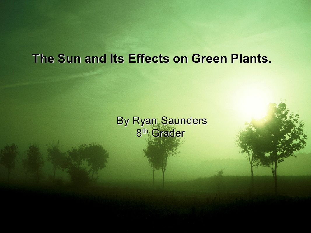 The Sun and Its Effects on Green Plants. By Ryan Saunders By Ryan Saunders 8 th Grader