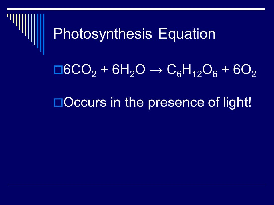Light and Pigments Not only does photosynthesis require light and CO 2, but it also requires chlorophyll.