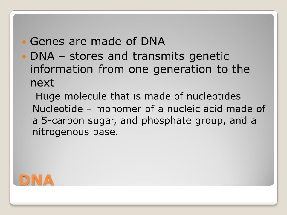 DNA Genes are made of DNA DNA – stores and transmits genetic information from one generation to the next Huge molecule that is made of nucleotides Nuc