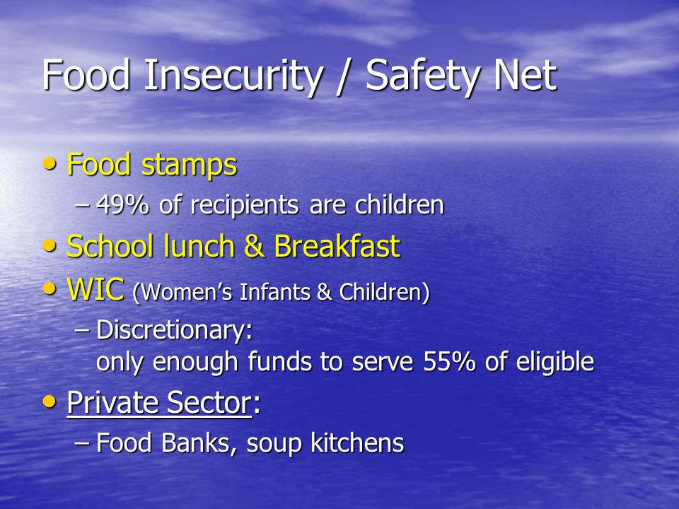 Food Insecurity / Safety Net Food stamps Food stamps –49% of recipients are children School lunch & Breakfast School lunch & Breakfast WIC (Womens Inf
