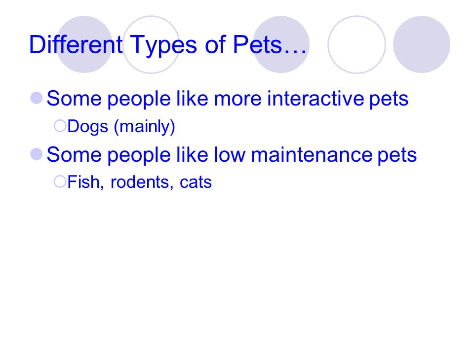 Different Types of Pets… Some people like more interactive pets Dogs (mainly) Some people like low maintenance pets Fish, rodents, cats