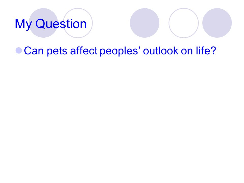 My Question Can pets affect peoples outlook on life?
