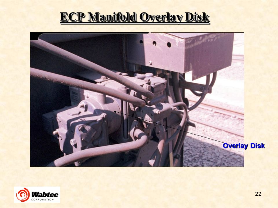 22 ECP Manifold Overlay Disk Overlay Disk