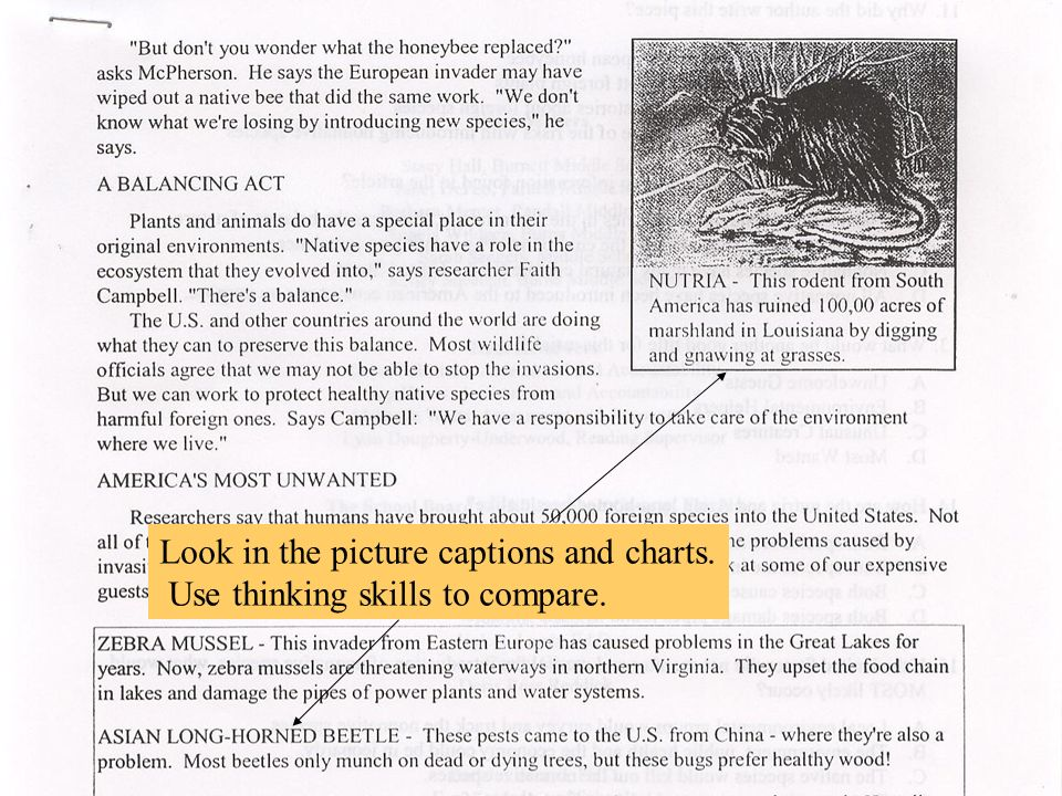 Look in the picture captions and charts. Use thinking skills to compare.