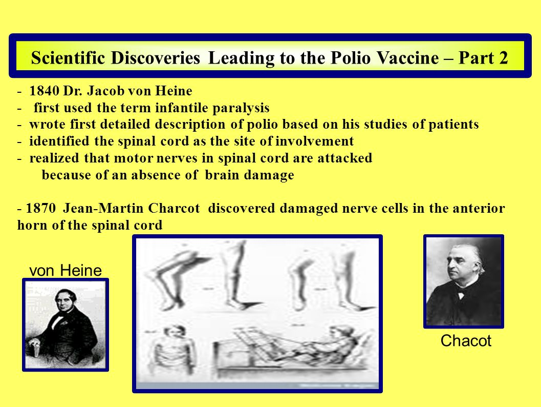 Scientific Discoveries Leading to the Polio Vaccine – Part 2 - 1840 Dr. Jacob von Heine - first used the term infantile paralysis - wrote first detail