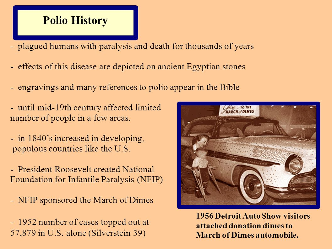 Polio History - plagued humans with paralysis and death for thousands of years - effects of this disease are depicted on ancient Egyptian stones - eng