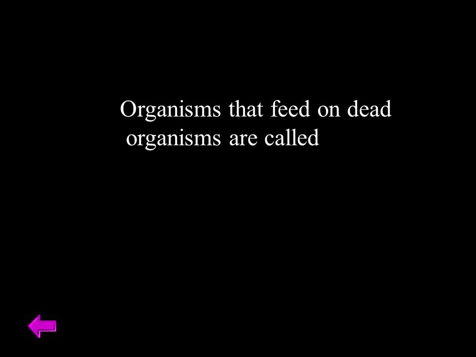 Organisms that feed on dead organisms are called