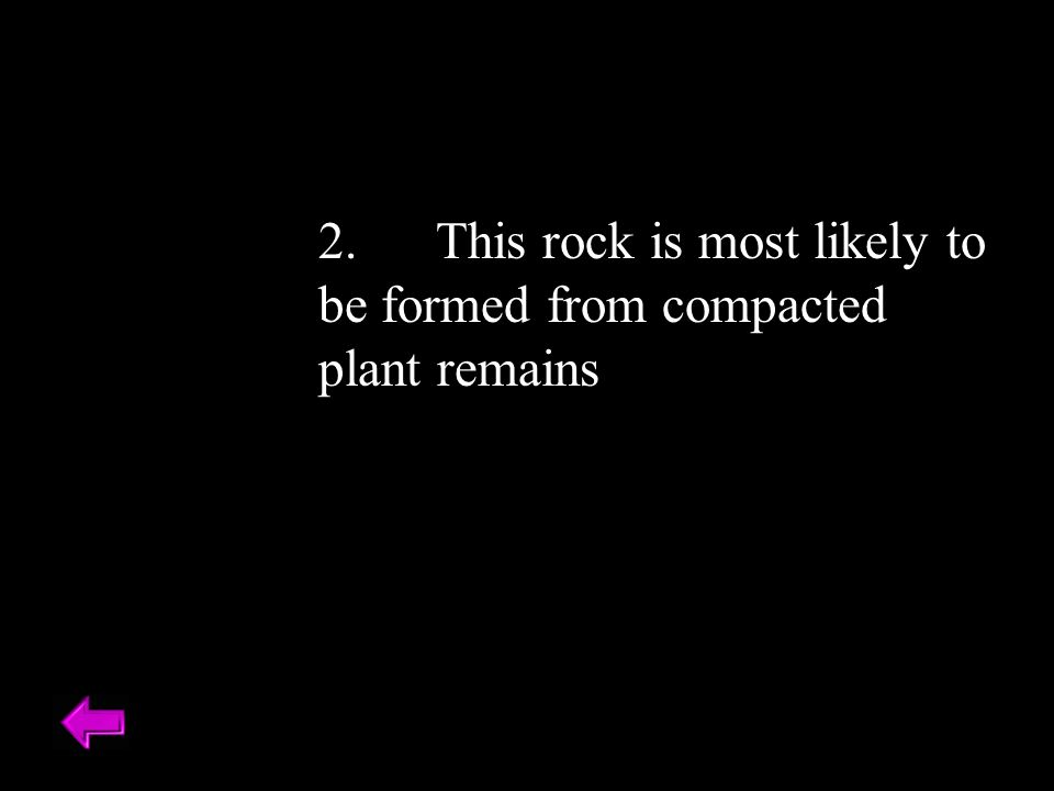 2. This rock is most likely to be formed from compacted plant remains