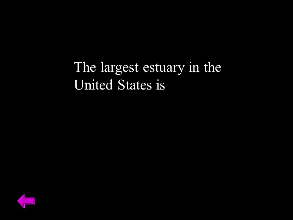The largest estuary in the United States is