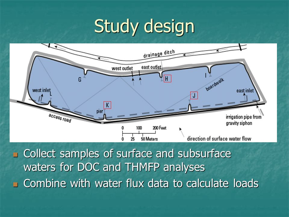 Study design Collect samples of surface and subsurface waters for DOC and THMFP analyses Collect samples of surface and subsurface waters for DOC and THMFP analyses Combine with water flux data to calculate loads Combine with water flux data to calculate loads