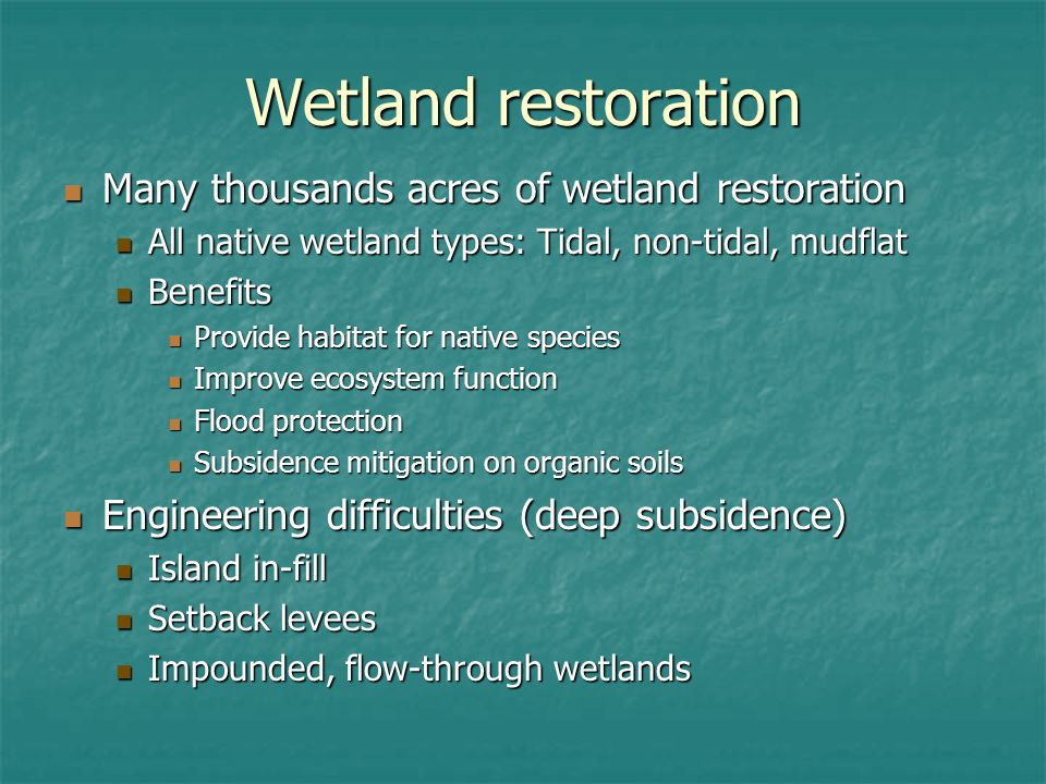 Wetland restoration Many thousands acres of wetland restoration Many thousands acres of wetland restoration All native wetland types: Tidal, non-tidal, mudflat All native wetland types: Tidal, non-tidal, mudflat Benefits Benefits Provide habitat for native species Provide habitat for native species Improve ecosystem function Improve ecosystem function Flood protection Flood protection Subsidence mitigation on organic soils Subsidence mitigation on organic soils Engineering difficulties (deep subsidence) Engineering difficulties (deep subsidence) Island in-fill Island in-fill Setback levees Setback levees Impounded, flow-through wetlands Impounded, flow-through wetlands