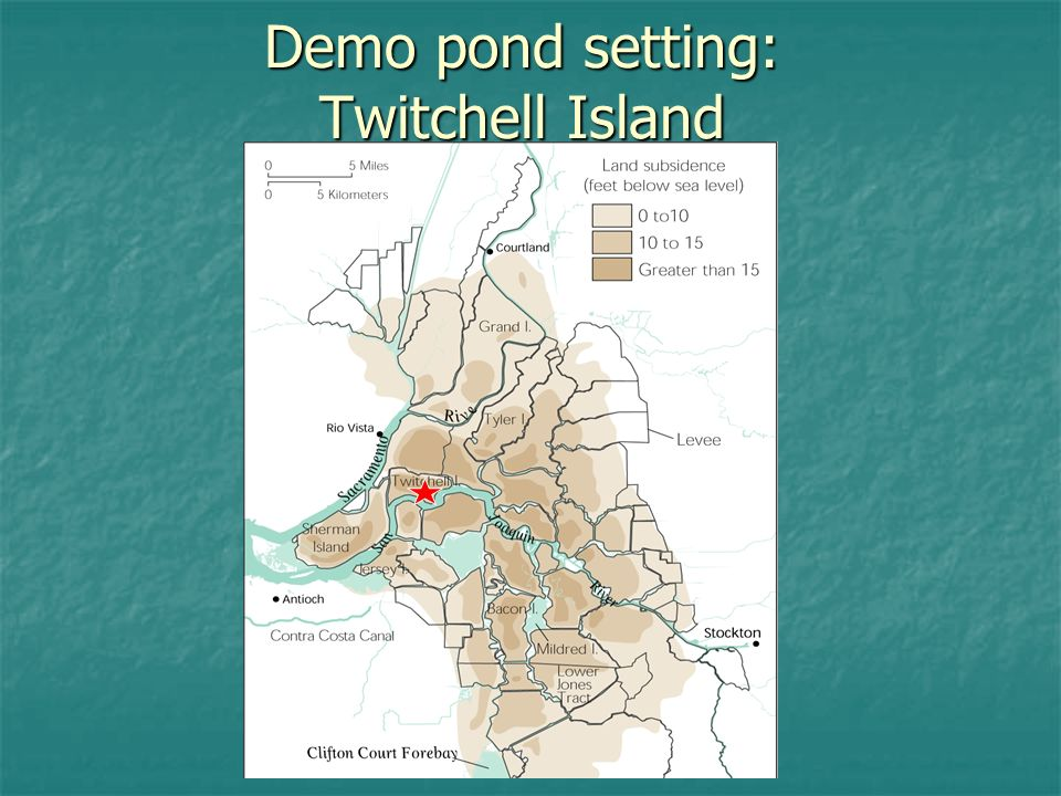 Twitchell Island Deeply subsided Deeply subsided As much as 20 ft As much as 20 ft Peat soils dominate Peat soils dominate >10 ft remain >10 ft remain ~35% OM ~35% OM Primarily agriculture Primarily agriculture srsr corn srsr corn Water upwelling Water upwelling