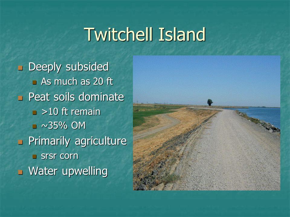 Twitchell Island drainage
