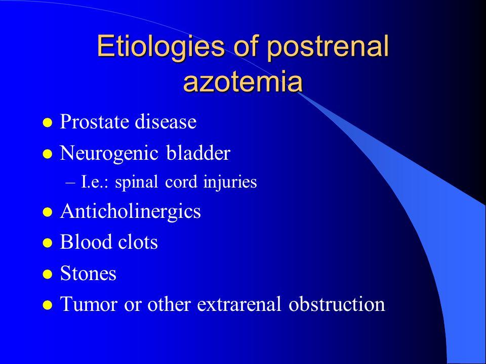 Etiologies of postrenal azotemia l Prostate disease l Neurogenic bladder –I.e.: spinal cord injuries l Anticholinergics l Blood clots l Stones l Tumor