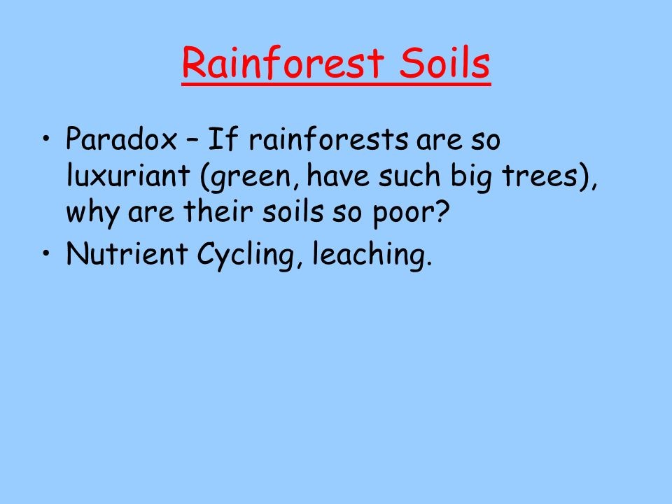 Rainforest Soils Paradox – If rainforests are so luxuriant (green, have such big trees), why are their soils so poor? Nutrient Cycling, leaching.