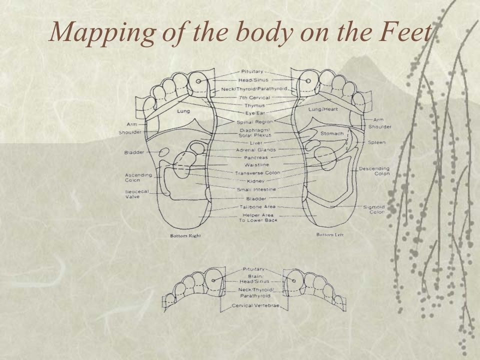 Mapping of the body on the Feet