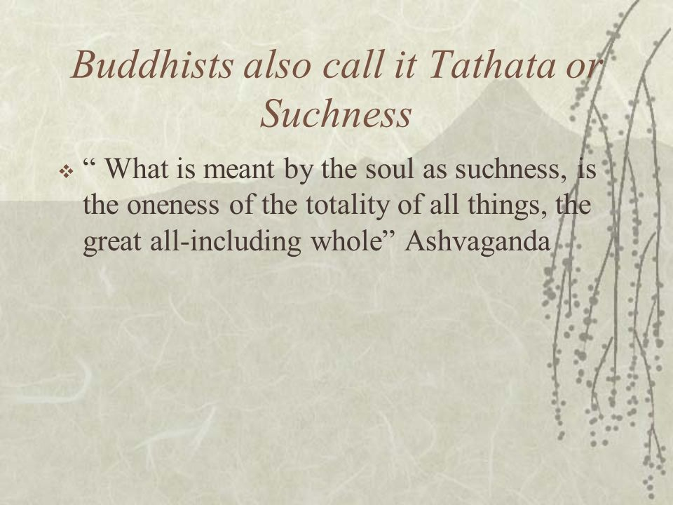 Buddhists also call it Tathata or Suchness What is meant by the soul as suchness, is the oneness of the totality of all things, the great all-includin