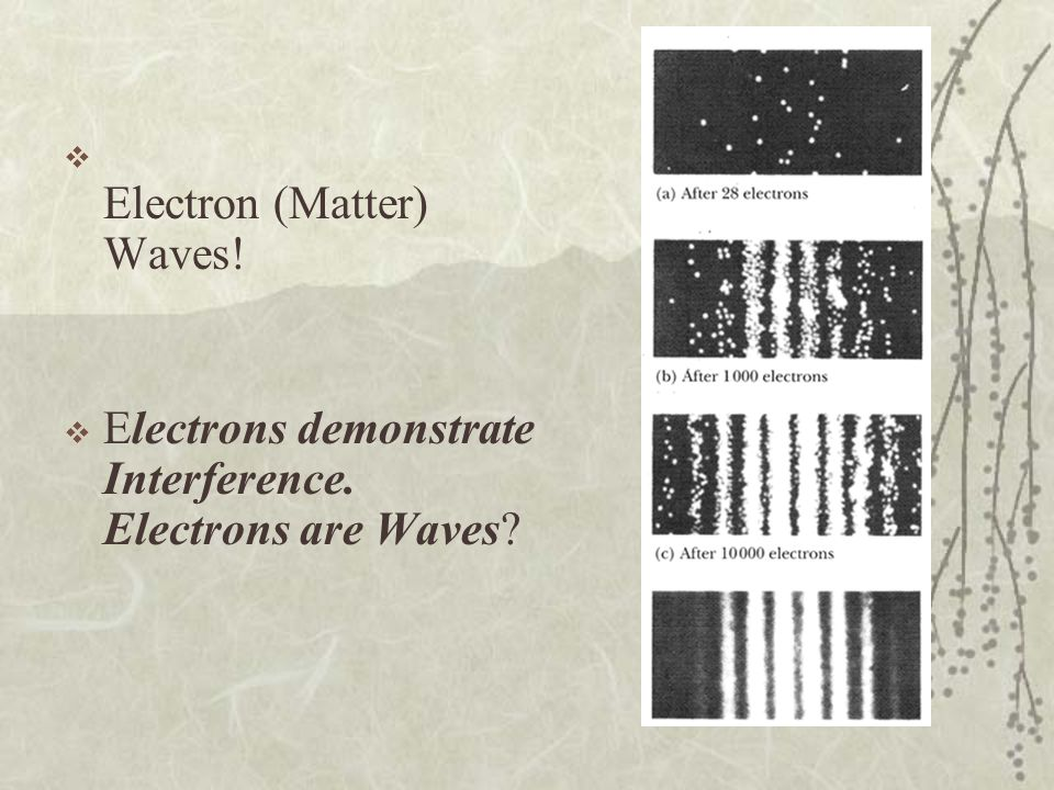 Electron (Matter) Waves! Electrons demonstrate Interference. Electrons are Waves?