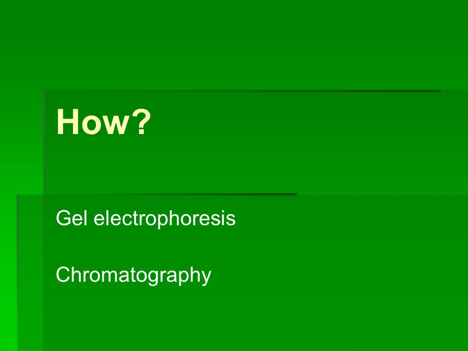 How Gel electrophoresis Chromatography