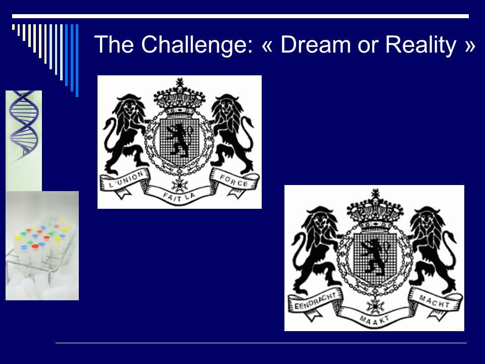 The Challenge: « Dream or Reality »