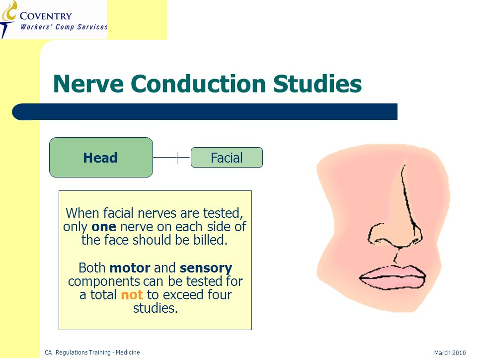 CA Regulations Training - Medicine March 2010 Nerve Conduction Studies Head Facial When facial nerves are tested, only one nerve on each side of the f