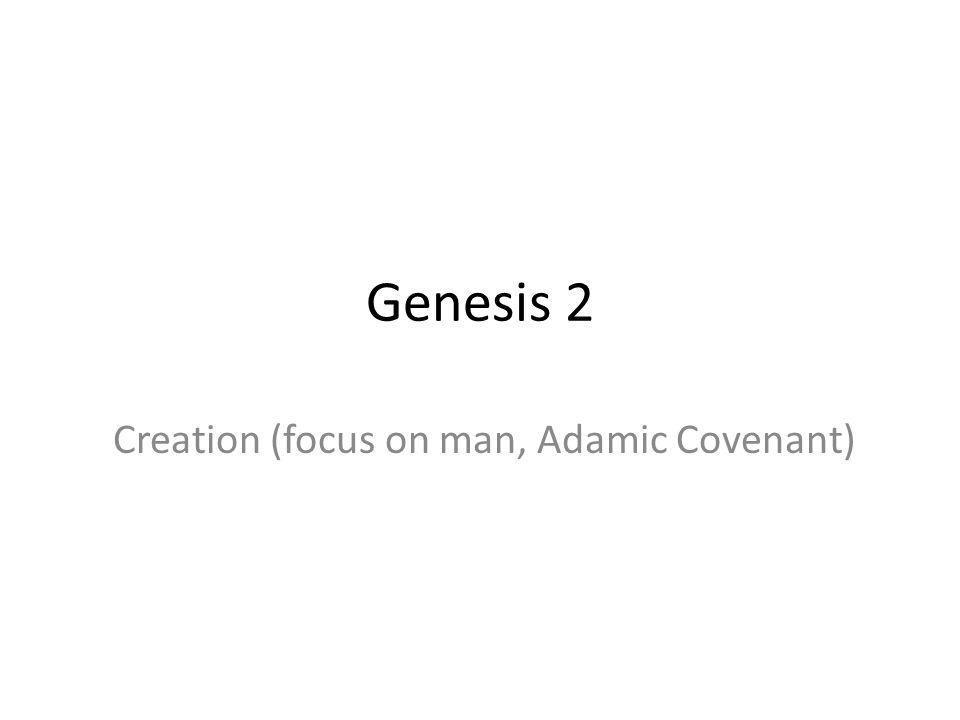 Genesis 2 Creation (focus on man, Adamic Covenant)