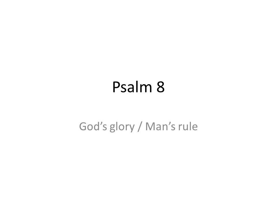 Psalm 8 Gods glory / Mans rule