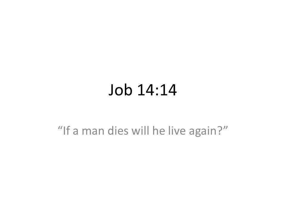 Job 14:14 If a man dies will he live again?