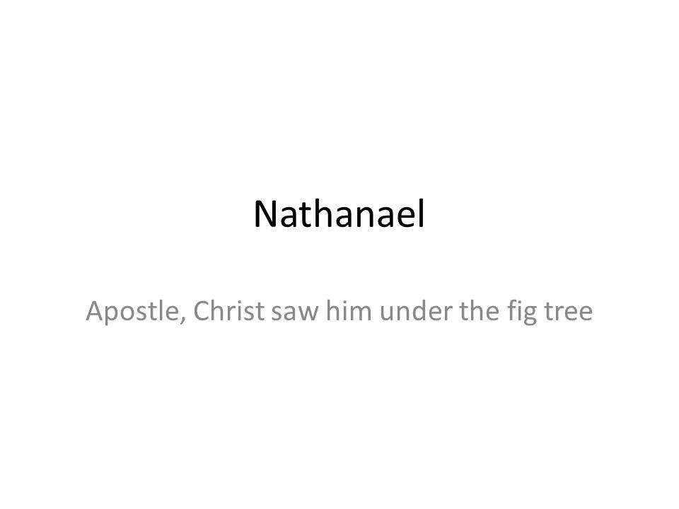 Nathanael Apostle, Christ saw him under the fig tree