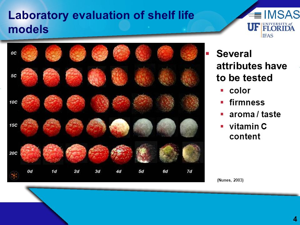 4 Laboratory evaluation of shelf life models Several attributes have to be tested color firmness aroma / taste vitamin C content (Nunes, 2003)