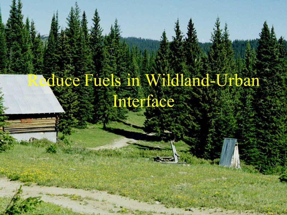 Reduce Fuels in Wildland-Urban Interface