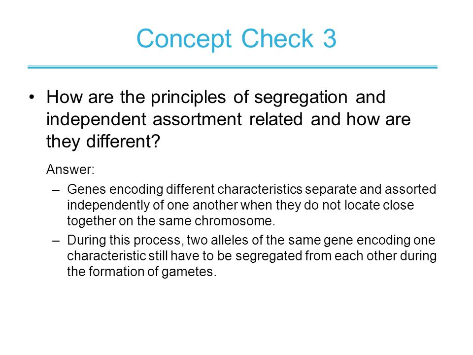 How are the principles of segregation and independent assortment related and how are they different? Answer: –Genes encoding different characteristics