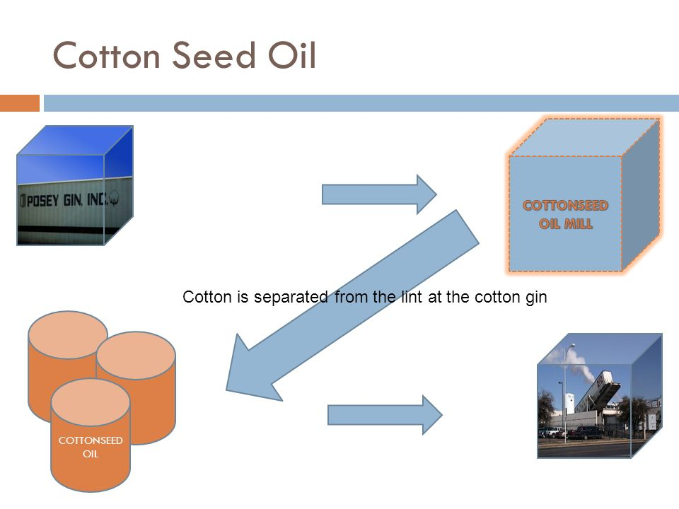 Products and Byproducts of Cotton CottonLint Fabric, Yarn Cotton seed Cotton seed oil Refined Cooking oil Rubber, Plastics GlycerinExplosivesHullsFert
