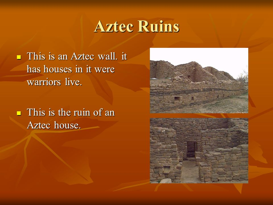 The Aztecs The Aztecs had large temples in which they sacrificed human beings. The Aztecs had large temples in which they sacrificed human beings. Thi