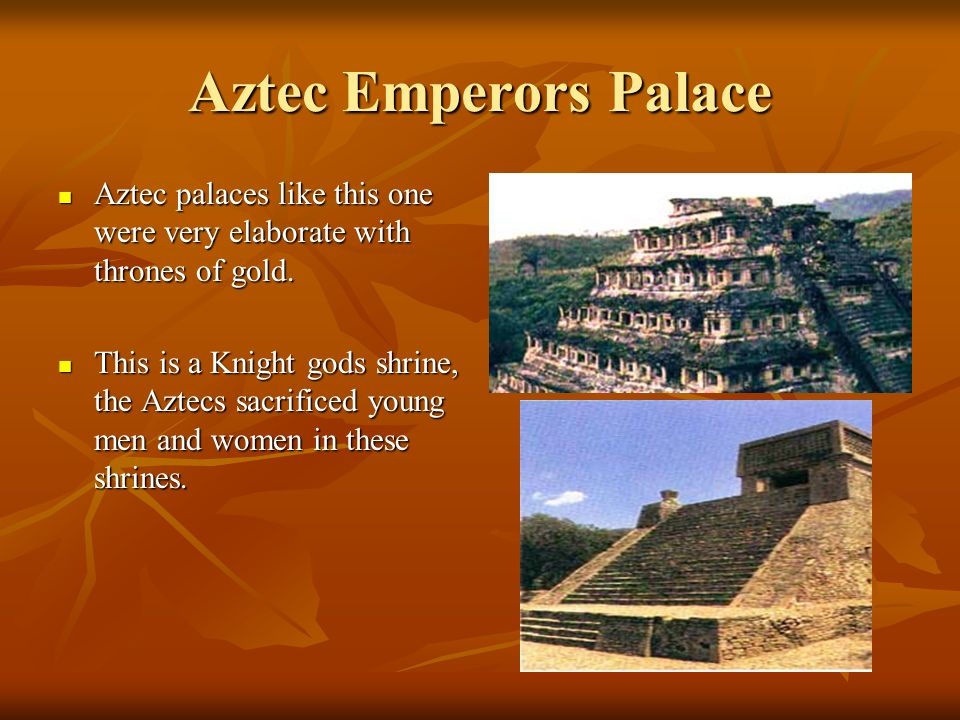 Aztec Emperors Palace Aztec palaces like this one were very elaborate with thrones of gold.