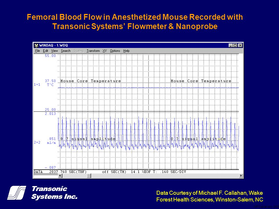 Transonic Systems Inc. Femoral Blood Flow in Anesthetized Mouse Recorded with Transonic Systems Flowmeter & Nanoprobe MFCallahan, 3/03 Data Courtesy o